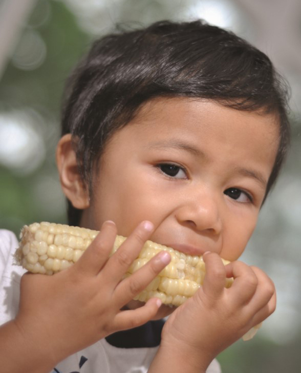 Mo 35 boy eating corn