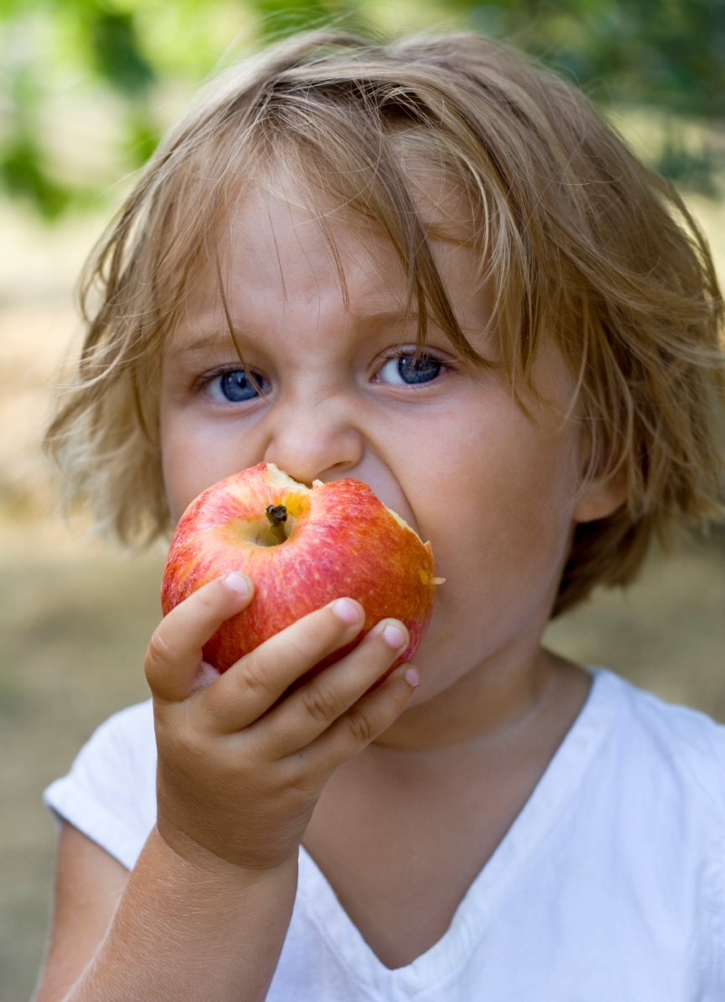 iStock_3 yr old eats apple (Custom)
